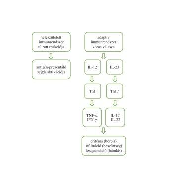Psoriasis vulgaris | extraszoftver.hu